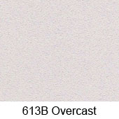 Overcast Stucco Color