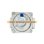 Lion Natural Gas Regulator